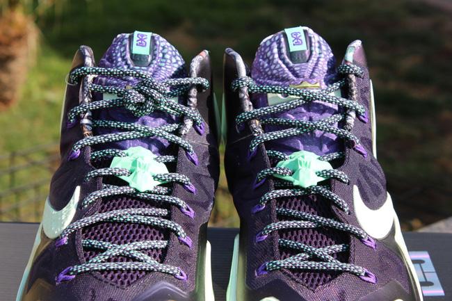 Nike LeBron 11 Gator King 5