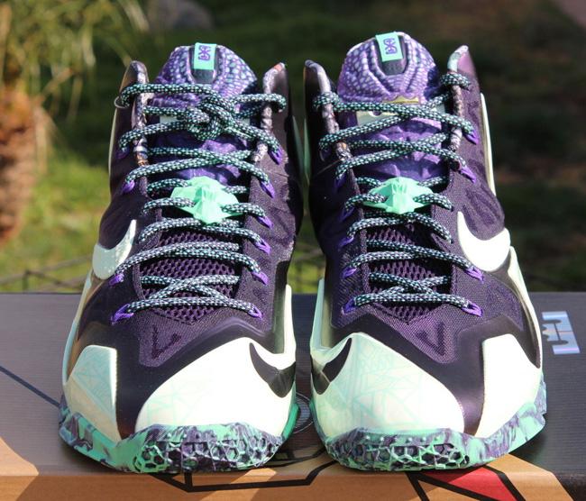 Nike LeBron 11 Gator King 6