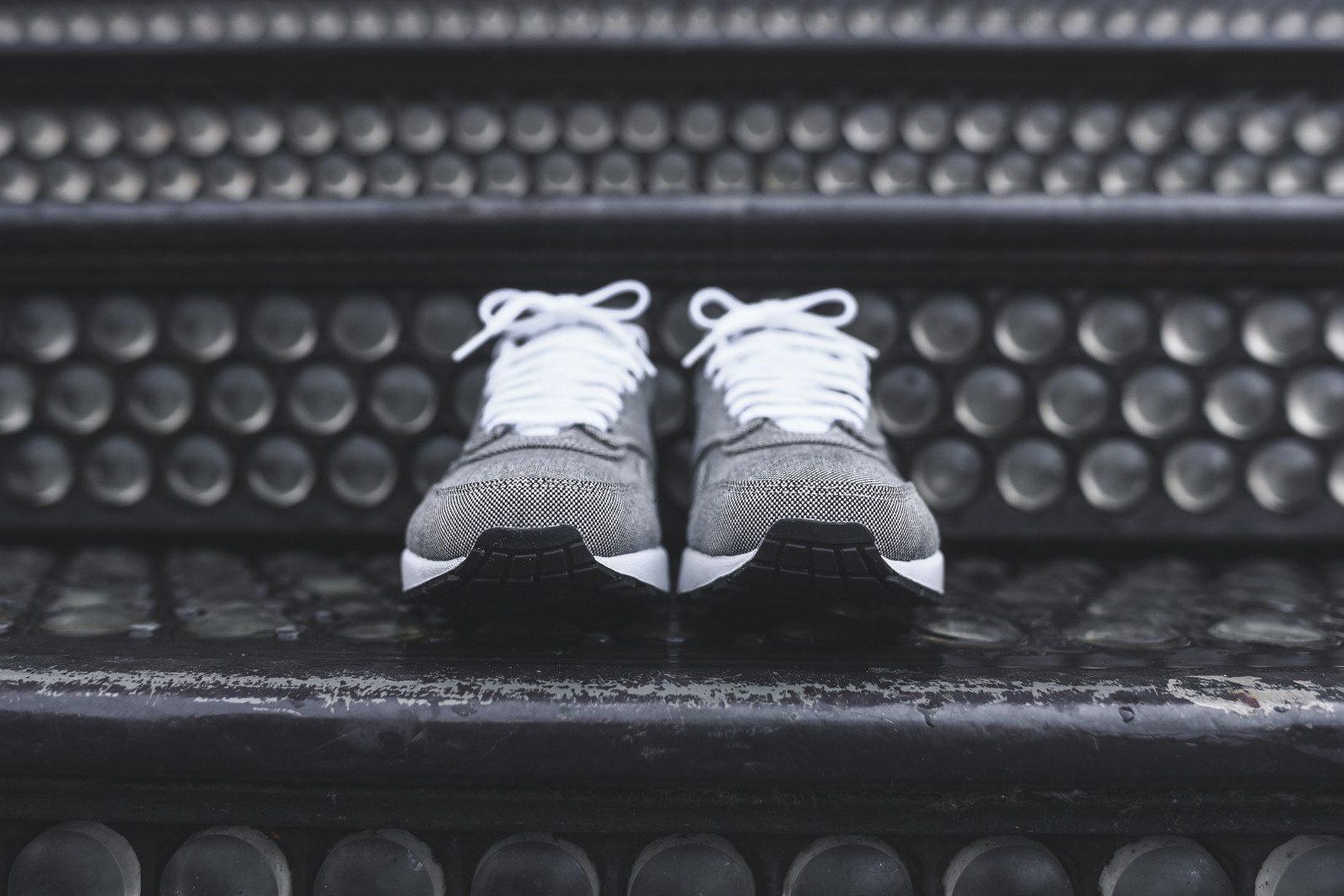 Nike Air Max 1 PRM Picnic 3