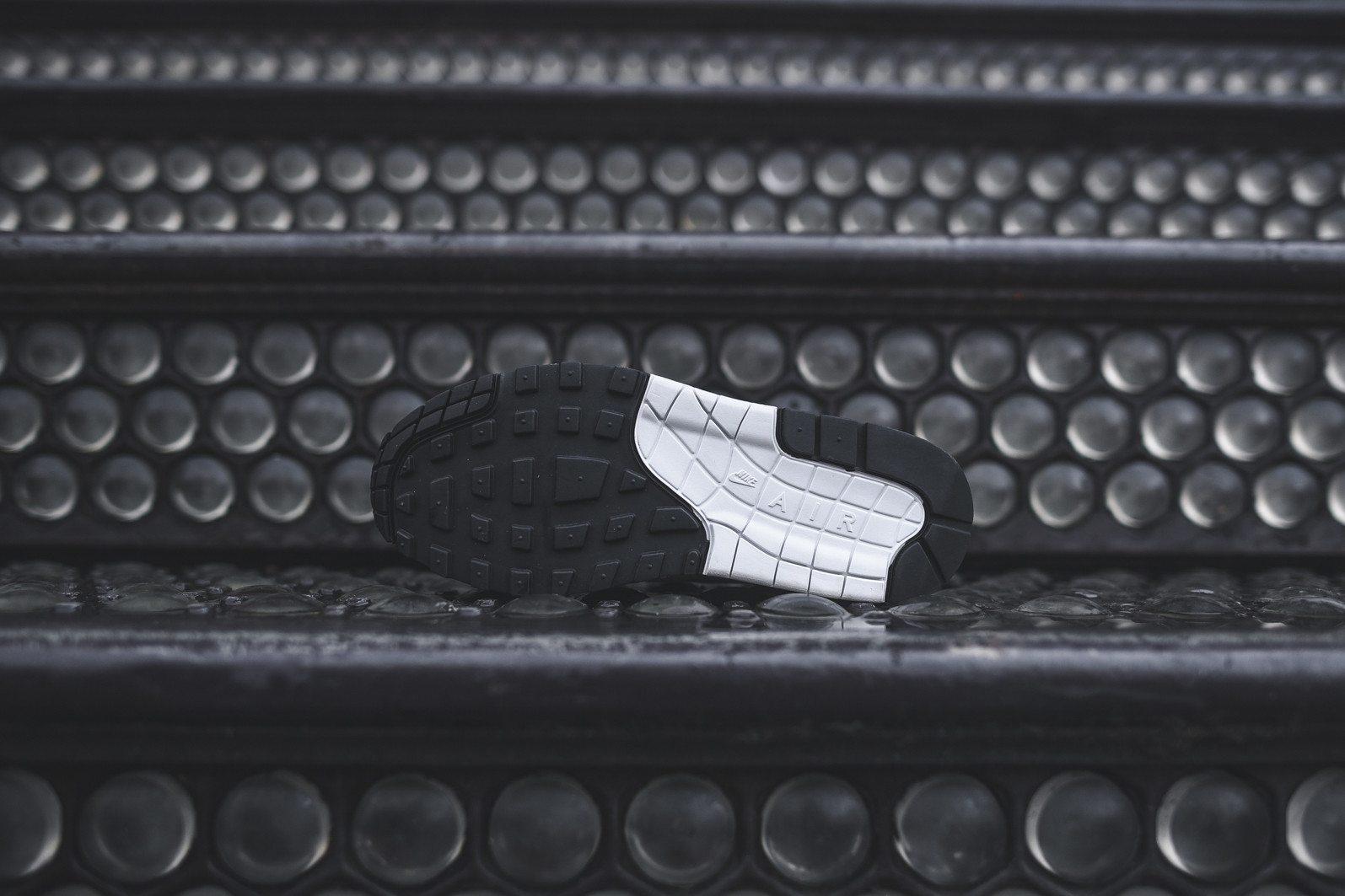 Nike Air Max 1 PRM Picnic 5