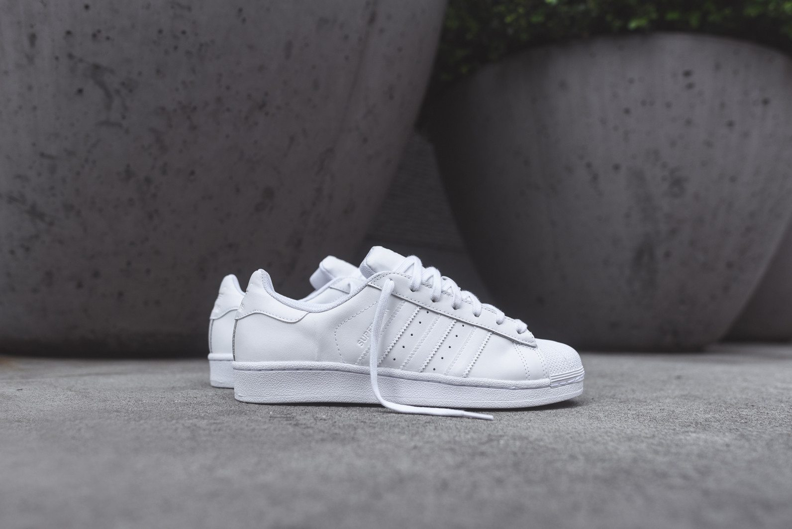 adidas Originals Superstar All White 1