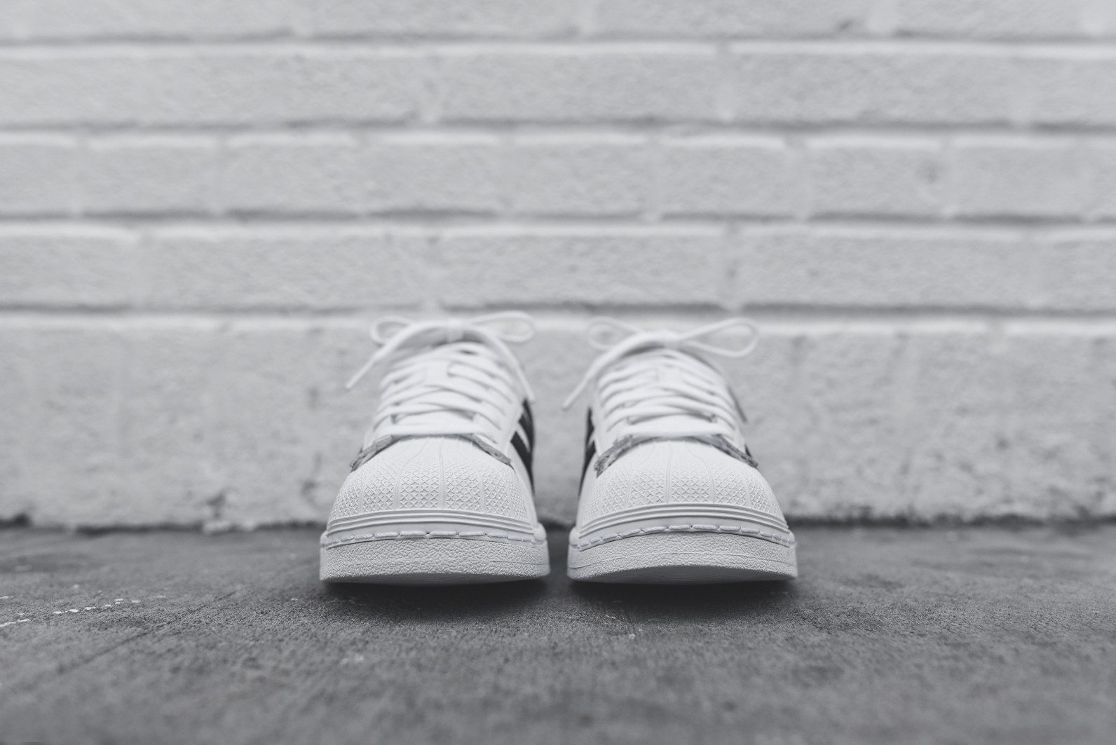 adidas Originals Superstar White Black 4