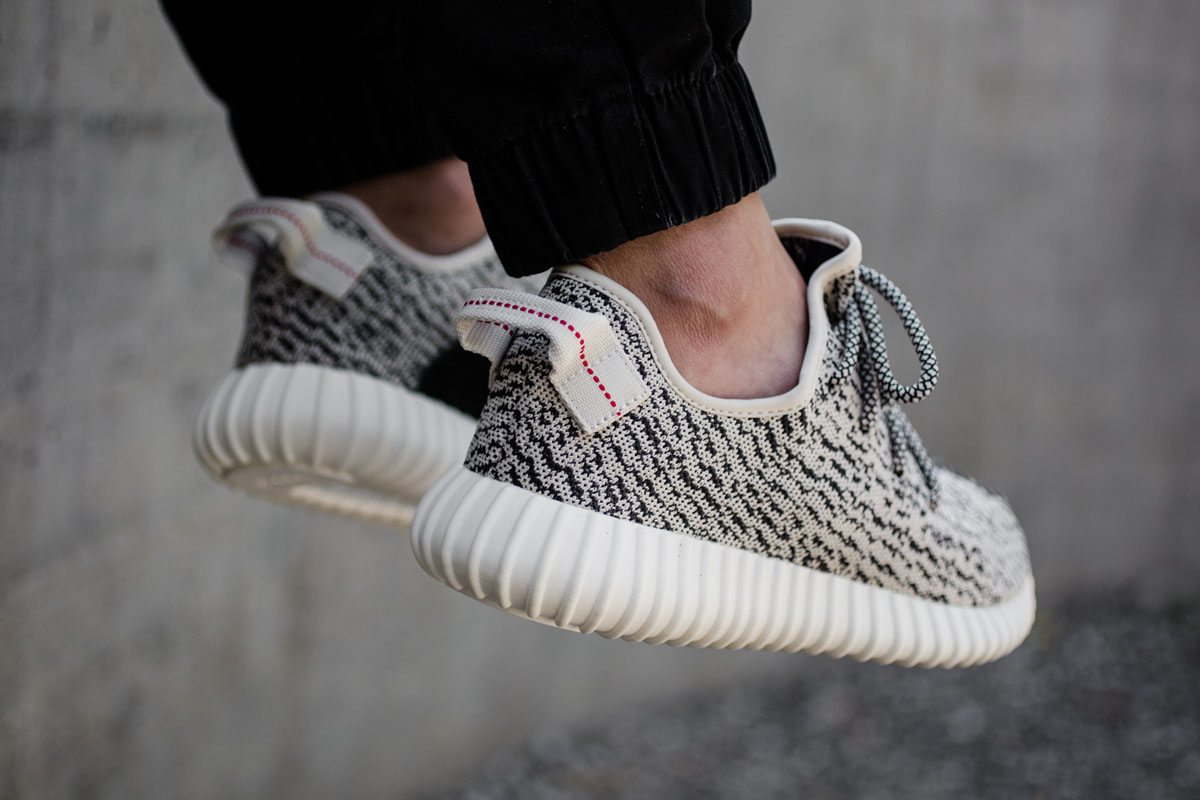 Yeezy Turtle Dove