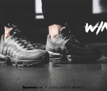 inflammable x agpos nike air max 95 350x300