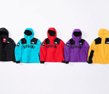 Supreme x The North Face Spring 2019 1 350x300